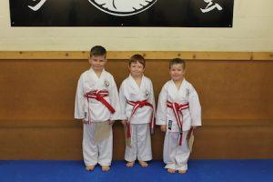 2 Stripe belts kubotan karate 2018
